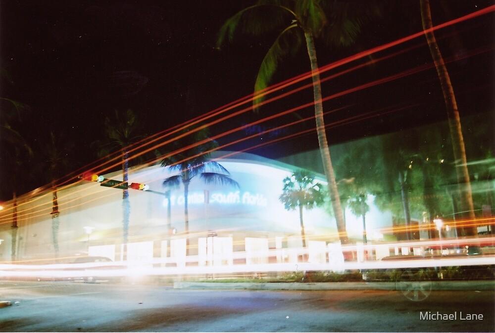 South Beach by Michael Lane