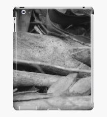 Creative Chaos  iPad Case/Skin