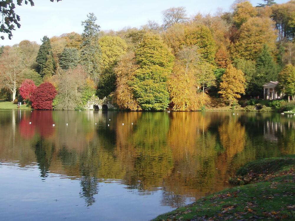 Reflections on a Lake by Wimburian