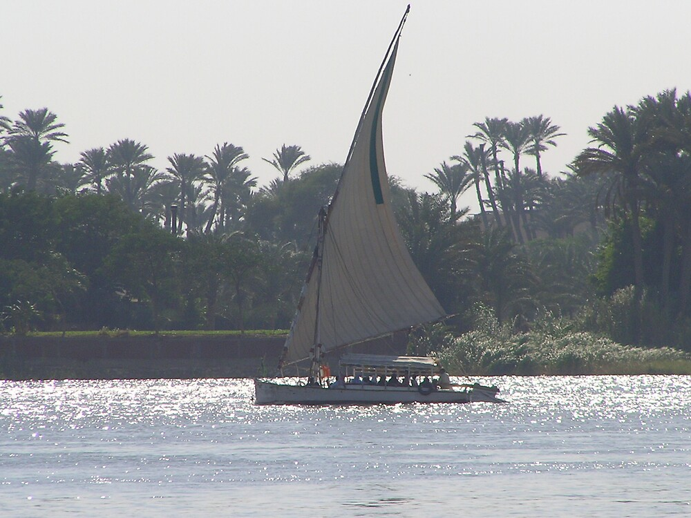Floating Down the Nile by amandadegregory
