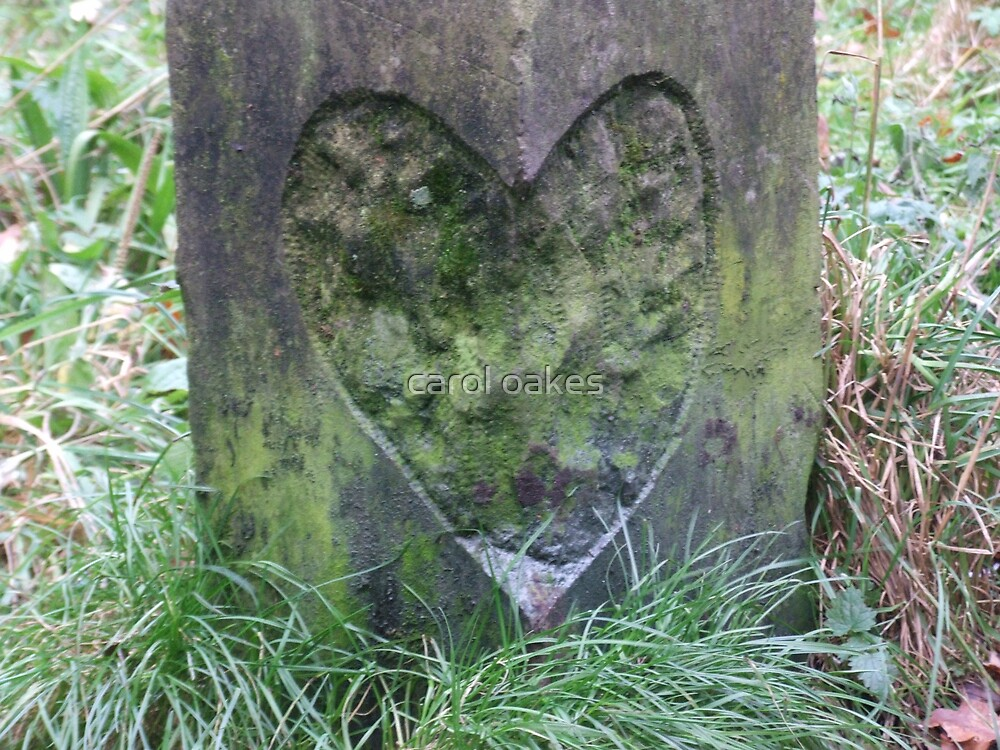 heart wood stump by carol oakes
