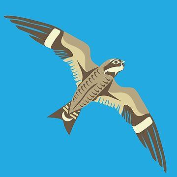 Common Nighthawk by Ceciken