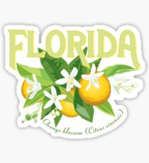 Florida - State Flower, Orange Blossom Sticker