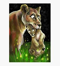 Lioness and her Cub Photographic Print