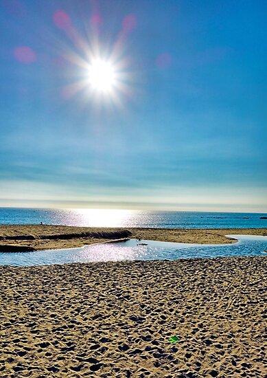 Laguna Beach Sunset by Robert Meyers-Lussier