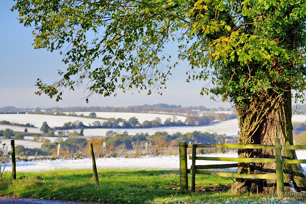 Winter in Autumn #2 by Roantrum