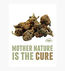 Mother Nature is the Cure Photographic Print