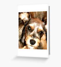 Molly Sue Greeting Card