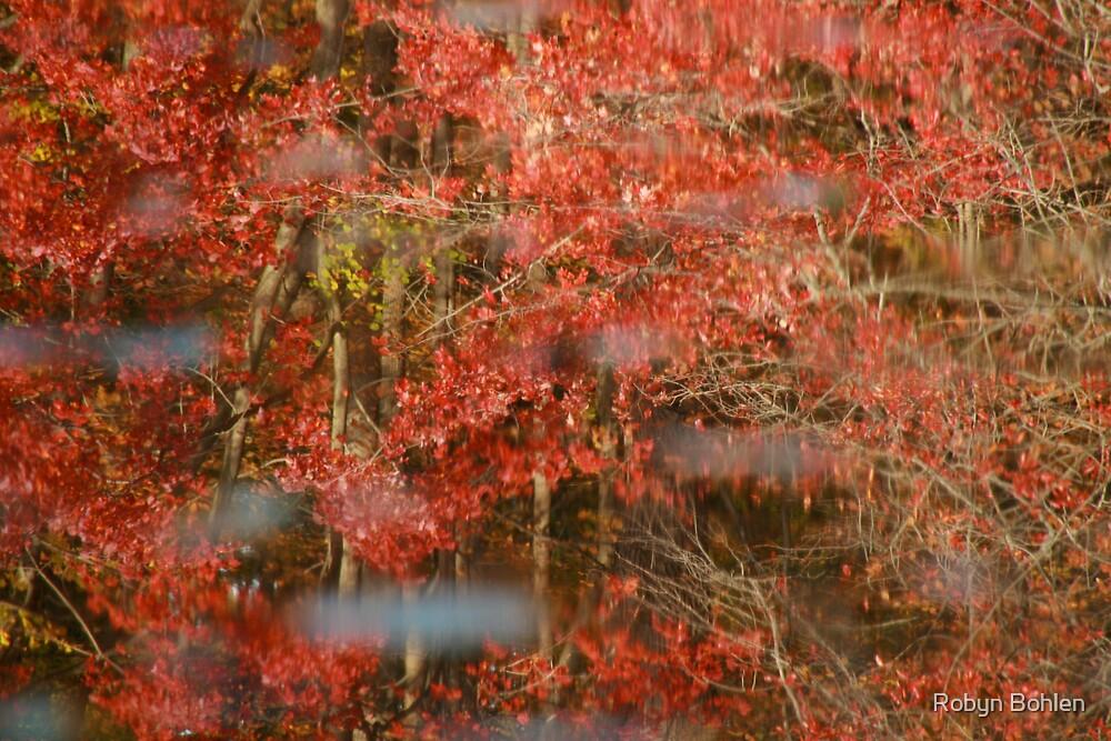 a beautiful blur by Robyn Bohlen