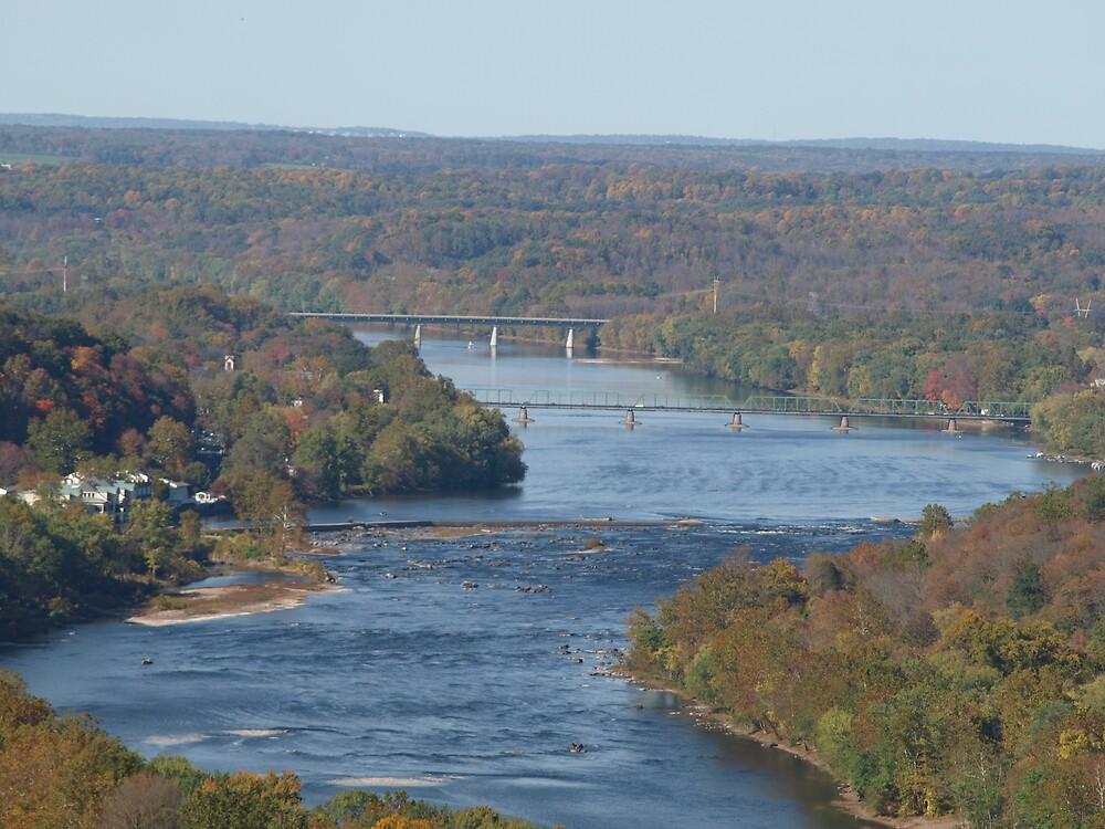 Delaware River Penn. by Maria  Palumbo