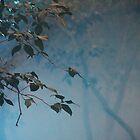 Blue mist by agnessa38
