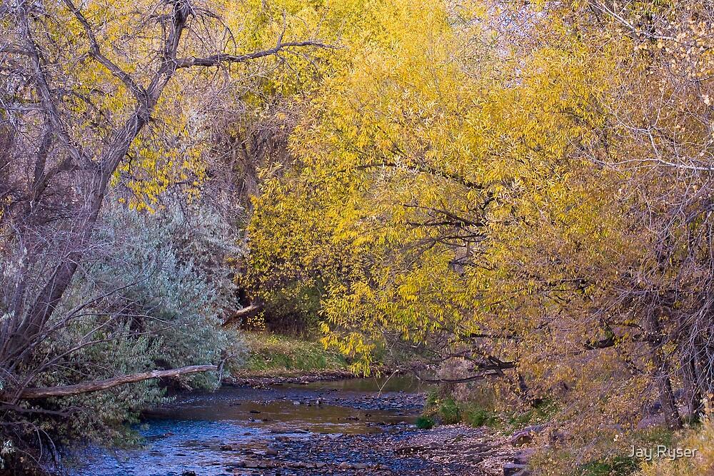 Cedar Creek by Jay Ryser