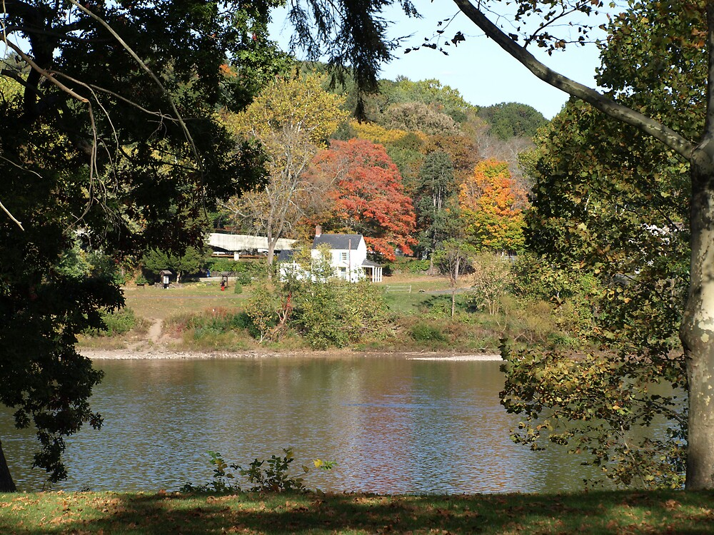 Autumn in New Jersey by Maria  Palumbo