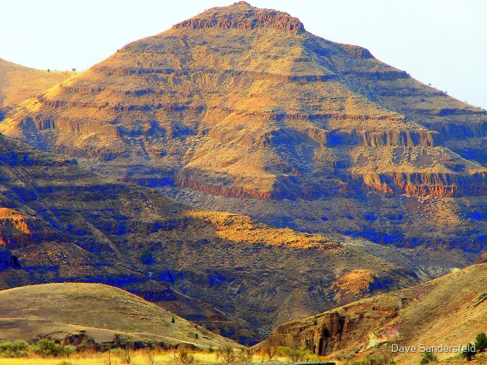 Picture Gorge Basalt by Dave Sandersfeld