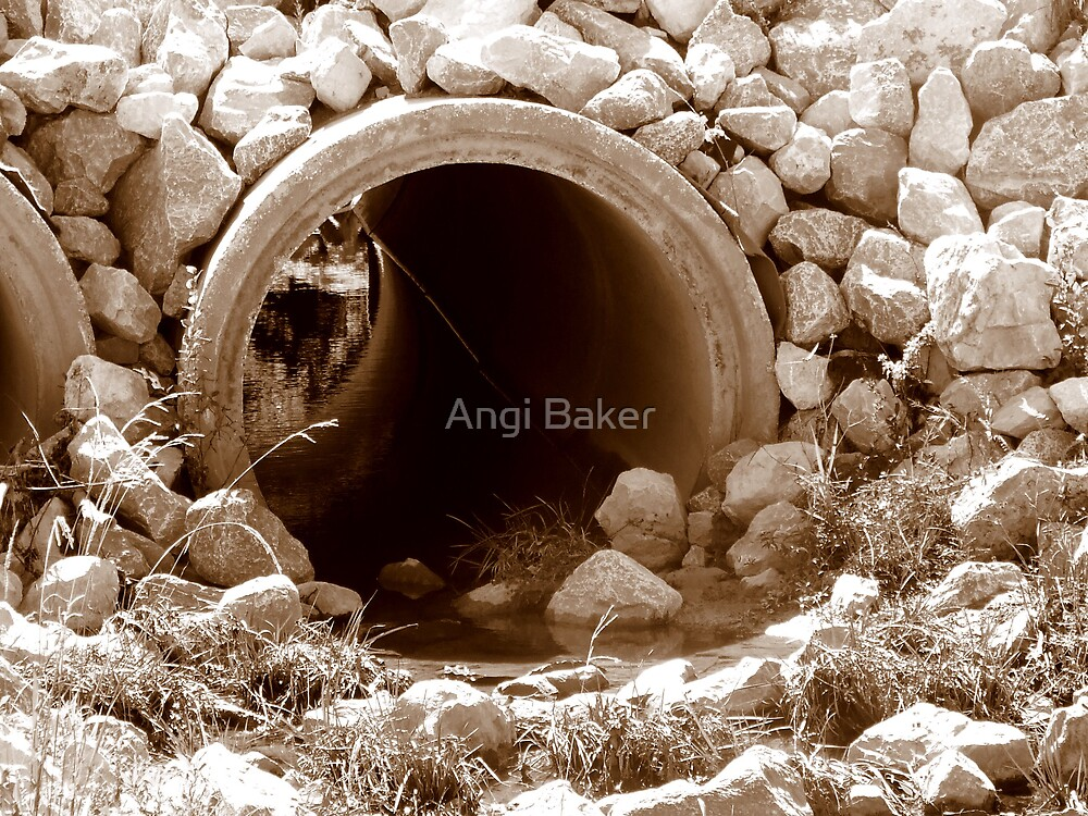 The Other Side by Angi Baker