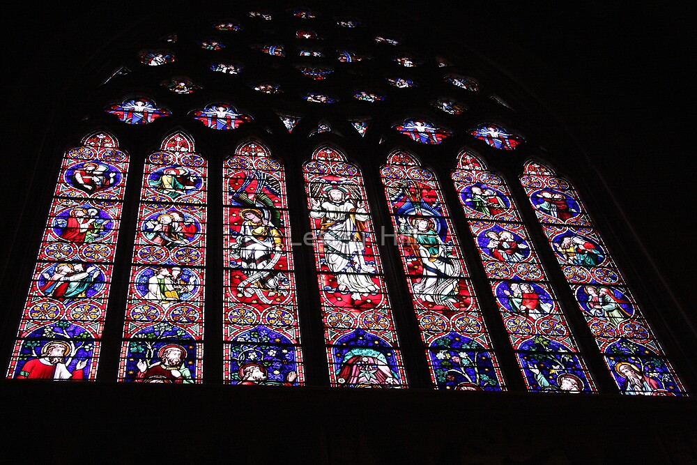 Stained Glass Window! by Lesley  Hill