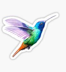 Flying hummingbird Sticker