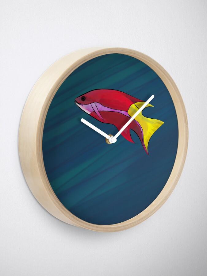 Alternate view of  Cuban Hogfish in the Ocean Clock