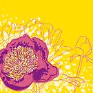 peony flowers by OlgaBerlet