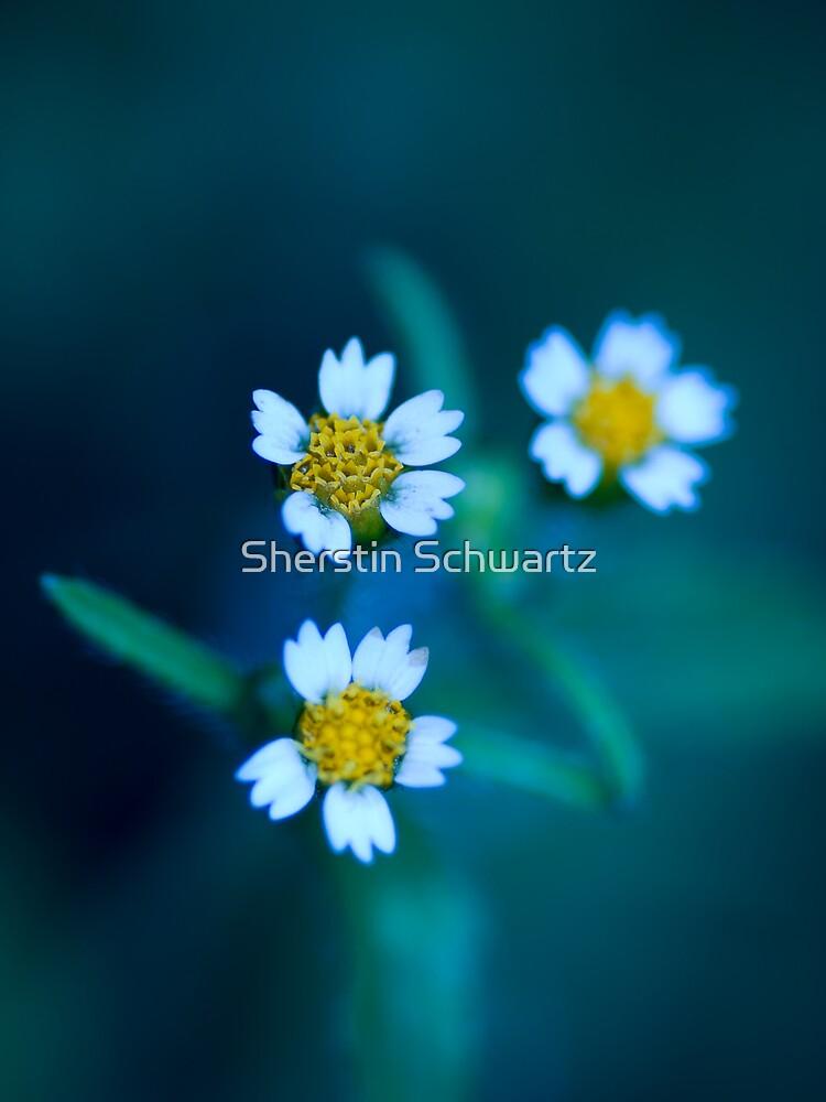 Bleu III. by Sherstin Schwartz