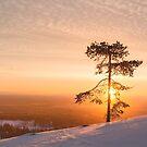 Lapland Sunrise (Pyha, Finland) by George Wheelhouse