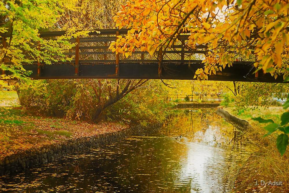 Bridge to Autumn by J. D. Adsit