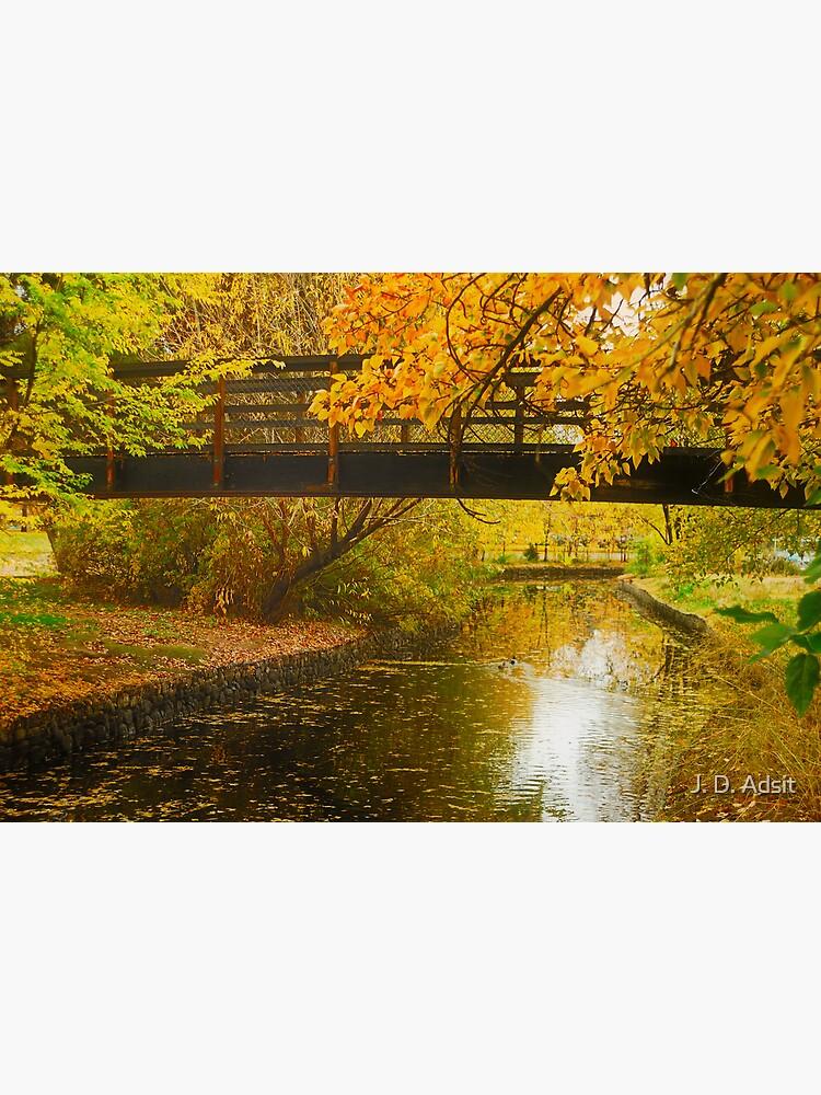 Bridge to Autumn by adsitprojectpro