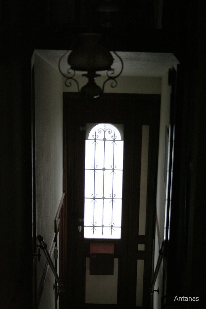 Open the DOOR by Antanas