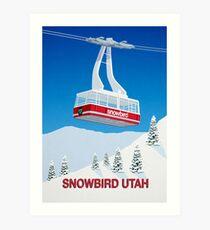 e711c8c638989 Snowbird Ski Resort Gifts   Merchandise