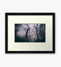 Tree in Cloud Reflection Framed Print