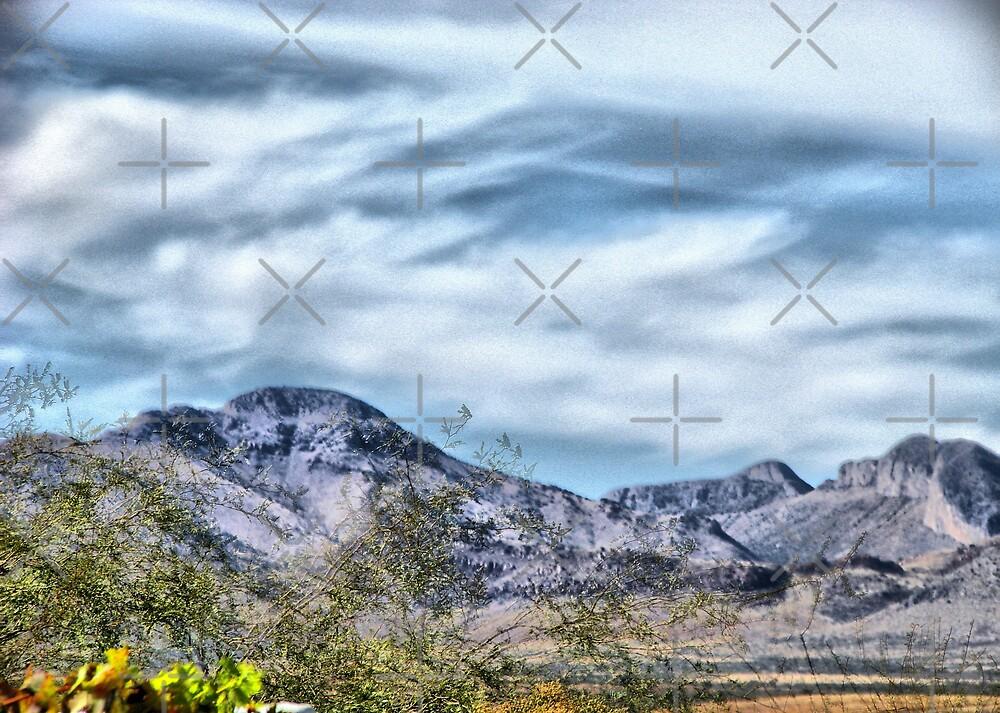 Desert Mountain Vista by Kimberly Miller