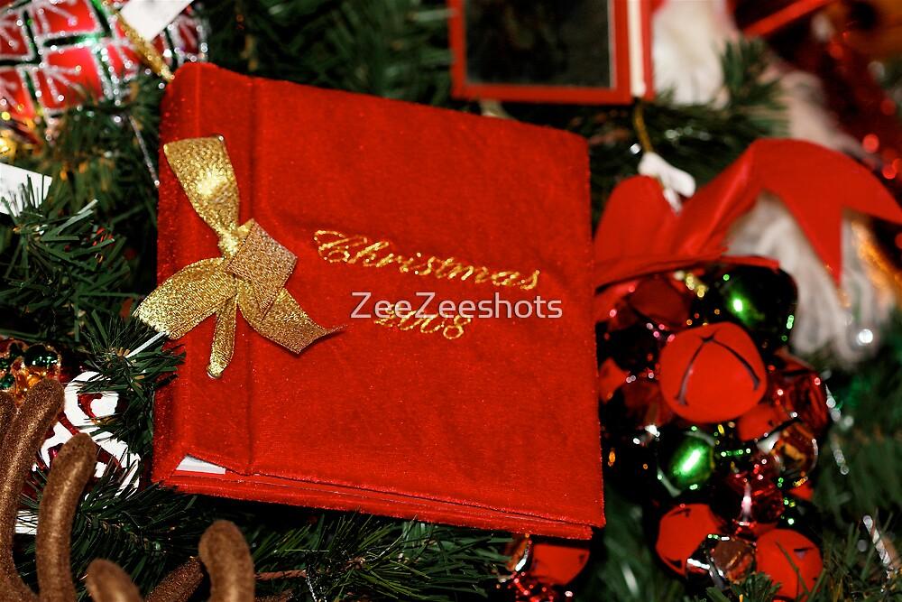 Christmas 2008 by ZeeZeeshots