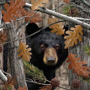 THE HUNTSMAN COLLECTION - Autumn Black Bear by stuph4kewlkidz