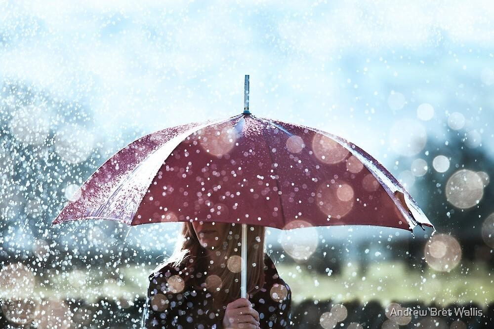 Hard Rain by Andrew Bret Wallis
