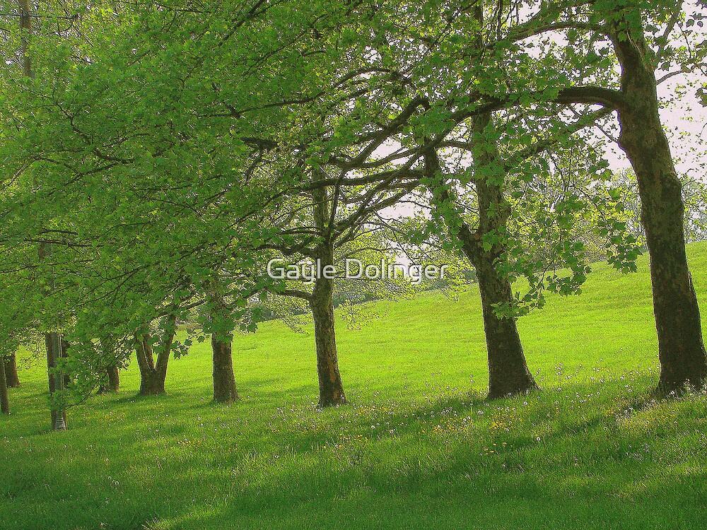 Spring Trees by Gayle Dolinger