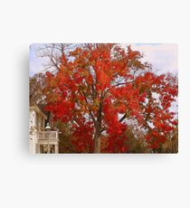 Firey Tree Canvas Print