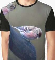 Did you see that? Graphic T-Shirt