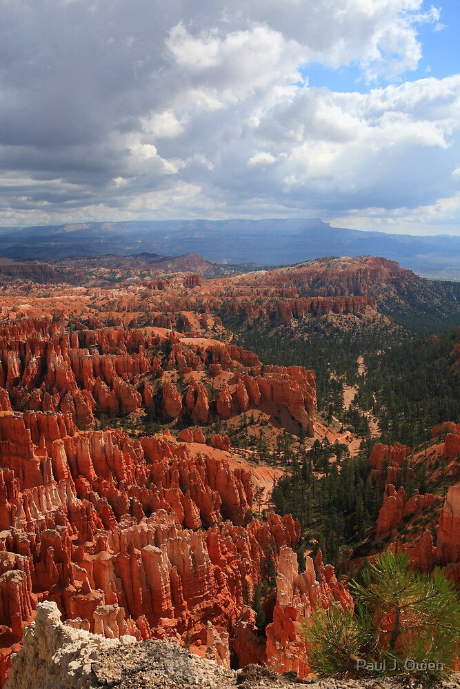Bryce Canyon, Utah by Paul J. Owen