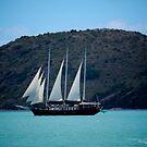 """""""Sailing"""" by hotfudge"""