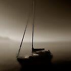 Wonderful foggy Morning at Lake Annecy by Imi Koetz