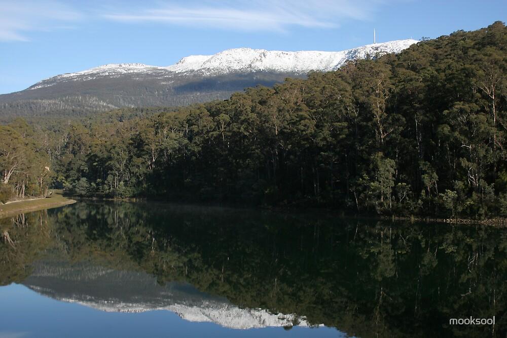 Mt Wellington by mooksool