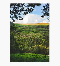 Ireland is a Land So Green Photographic Print