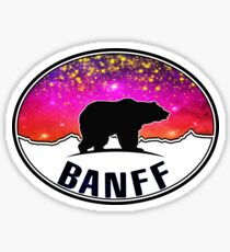 Banff Alberta Canada National Park Northern Lights Bear Sticker