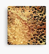 The Gold Rush Canvas Print