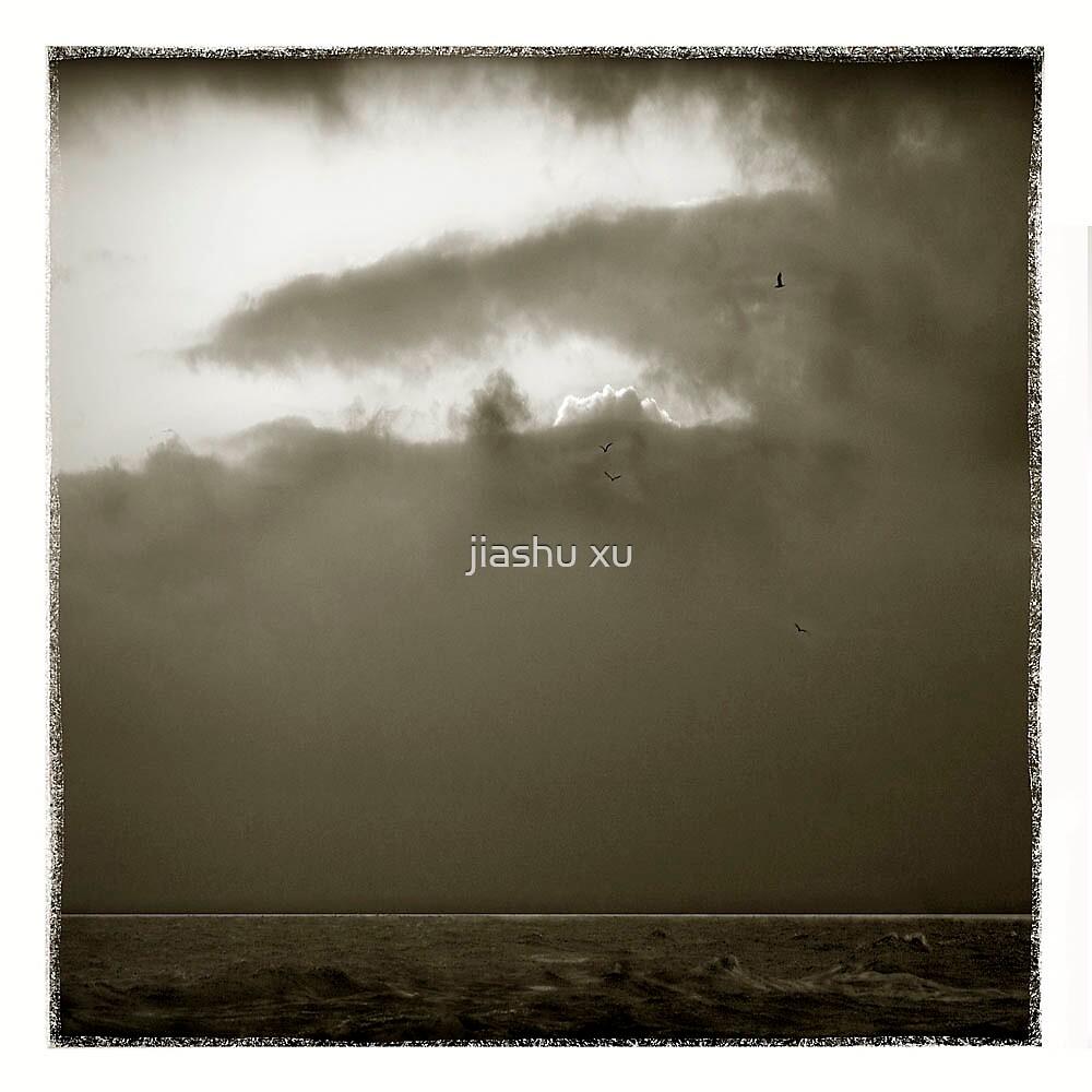 sky & earth 33 by jiashu xu