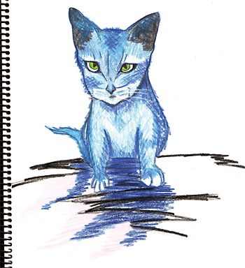 Blue cat by Emma Perkins