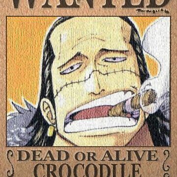 Wanted Crocodile - One Piece by yass-92