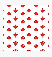 Canadian maple leaf pattern Photographic Print