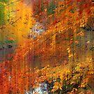 Autumn Cascade by Jessica Jenney