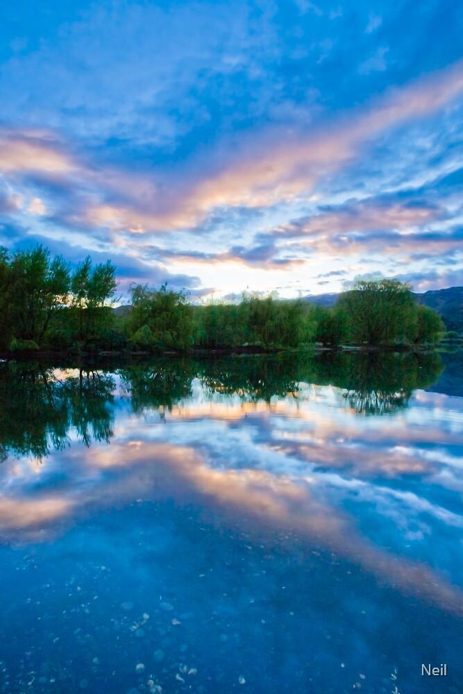 Lake Dunstan  by Neil